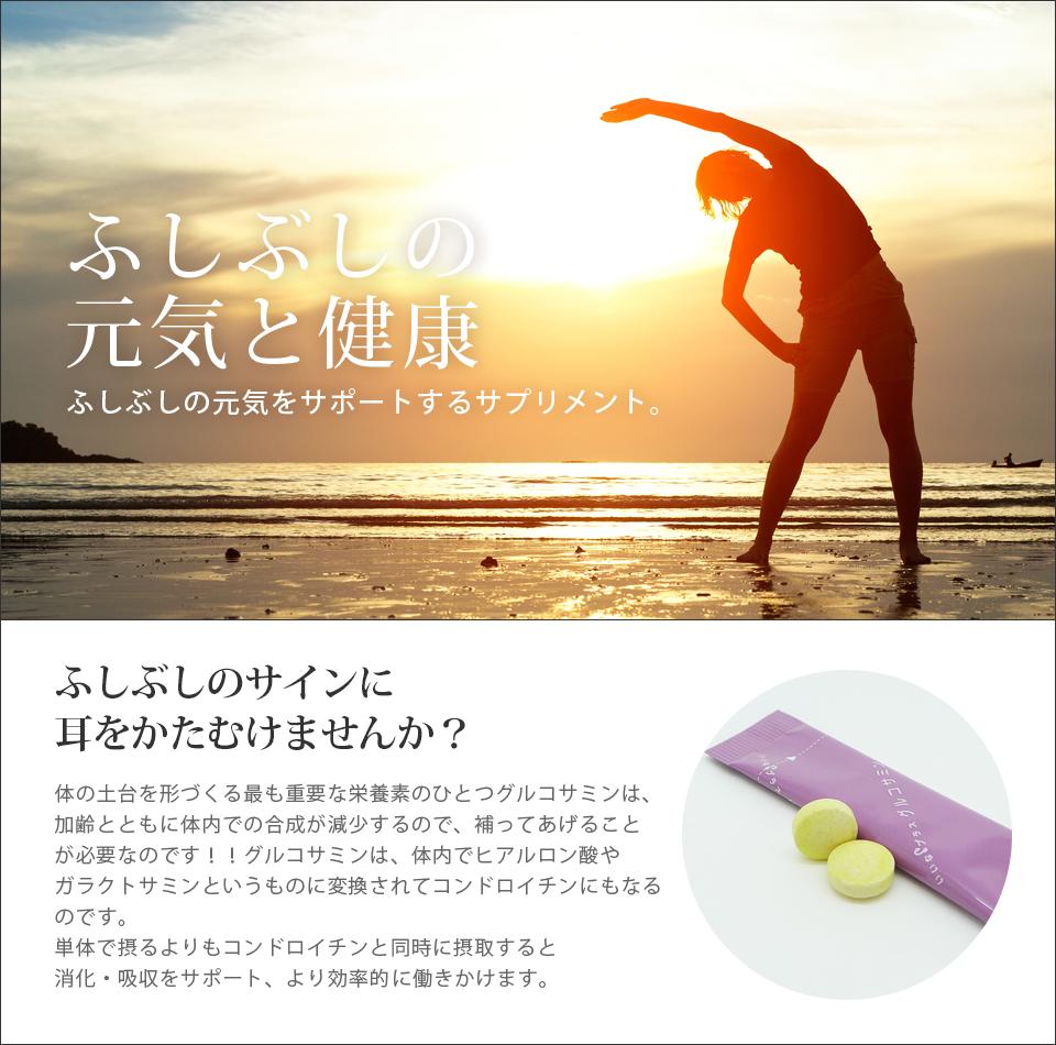 ふしぶしの元気と健康に-サプリメント