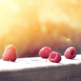 berries_R